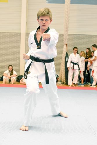Martial-Arts-WC-2015-1678