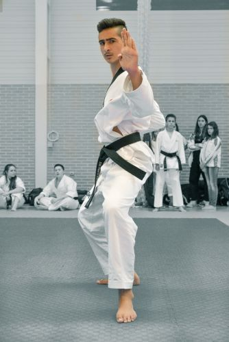 Martial-Arts-WC-2015-1689