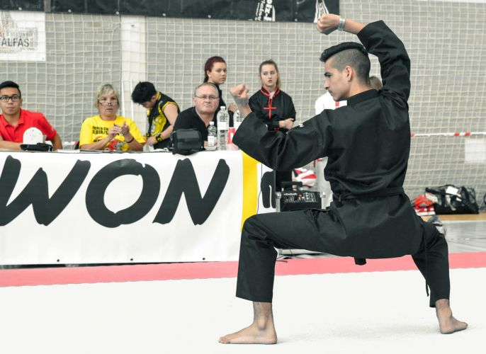 Martial-Arts-WC-2015-799
