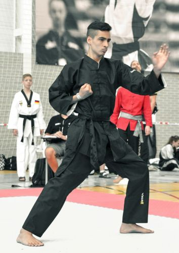 Martial-Arts-WC-2015-803