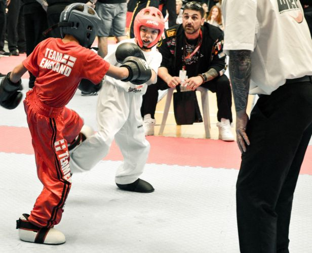 Martial-Arts-WC-2015-930