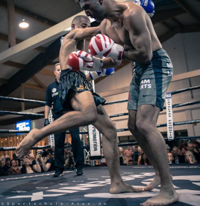Phoenix fight night sportschule alex2017-3680