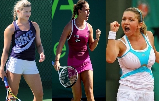 Review of the Tennis Grand Slam Winners 2014