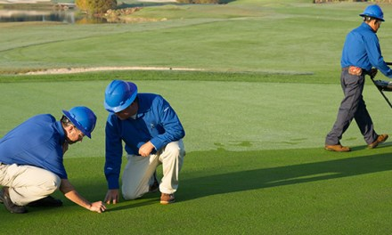 The Options you have to Save the Cost of Golf Course Maintenance