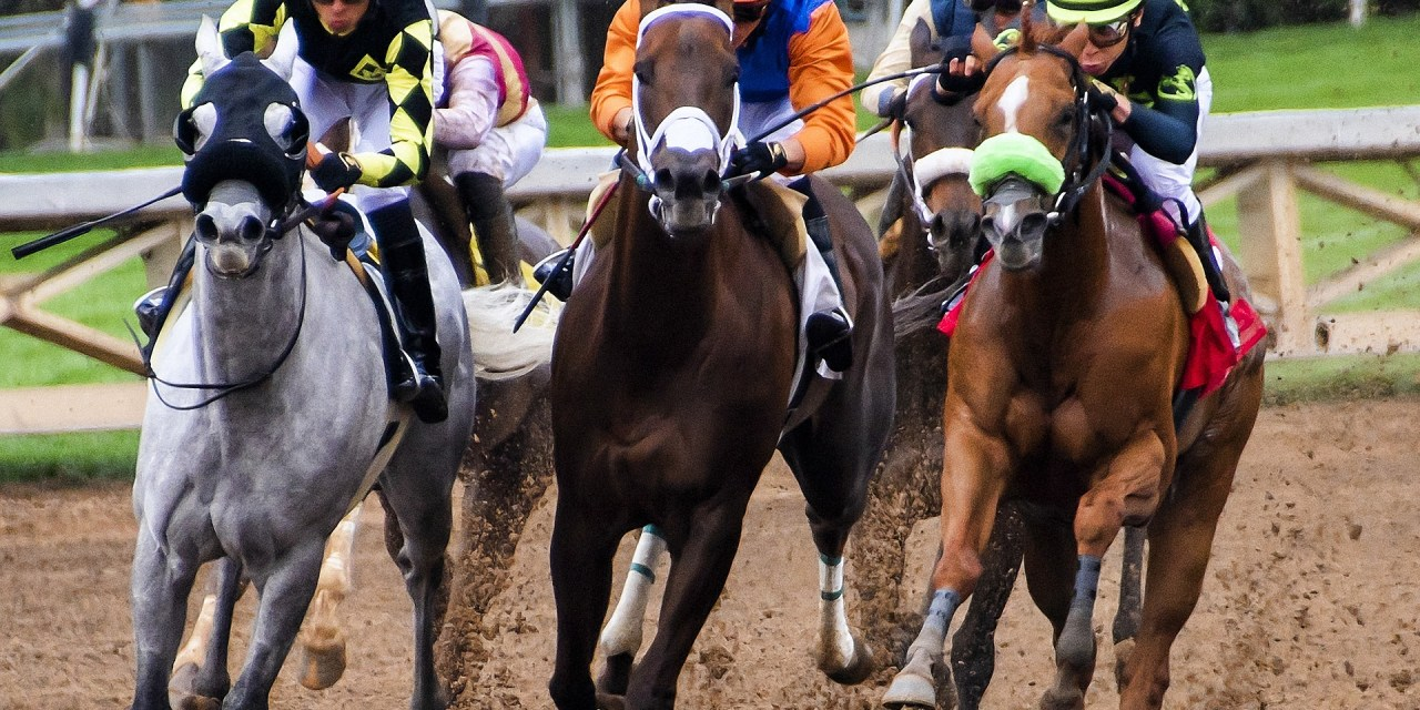Preakness Stakes Picks: Three Angles that have Printed Money at the Preakness