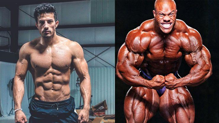 SARMs Vs  Steroids – Differences In Their Working Principles