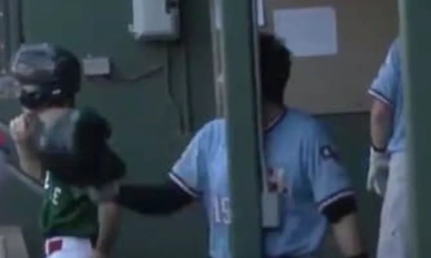 Minor Leaguer Walks into a Pole Arguing Balls and Strikes