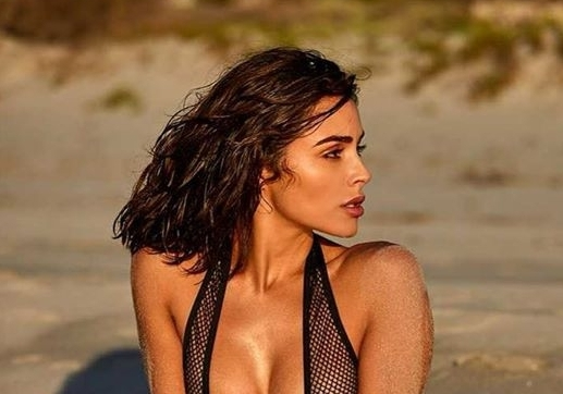 Olivia Culpo Shared an Incredible See Through Sports Illustrated Swimsuit Throwback
