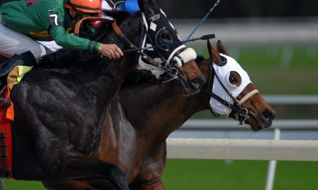 The Biggest Horse Racing Meetings in the World