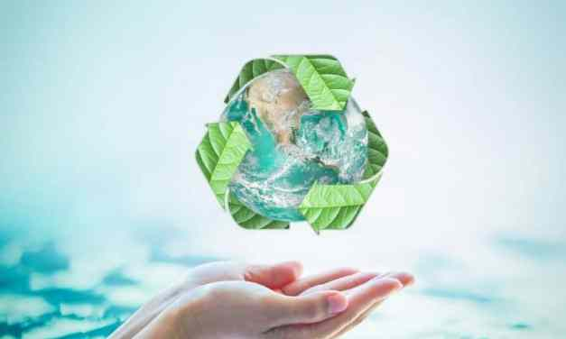10 Interesting Facts About Recycling That You Should Know