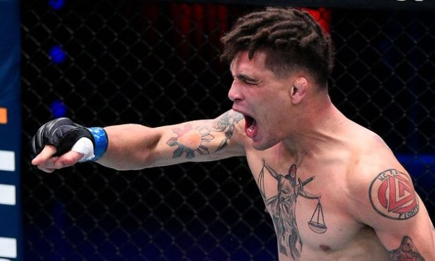 UFC's Williams fights off would-be car thief
