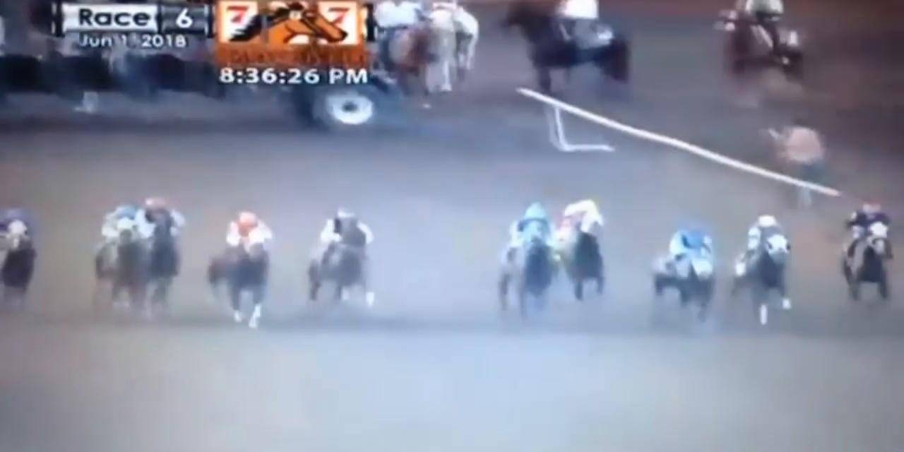 Bofa Deez Nuts Horse Race