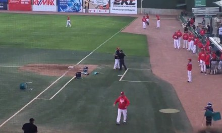 Manager of a Canadian Summer Baseball Team Lost His Mind and Threw Chairs on the Field
