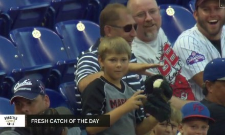 Young Fan Flashes Some Leather on a Hot Shot Line Drive