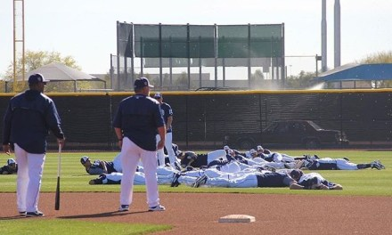 Bee Swarm Hits Padres Spring Training