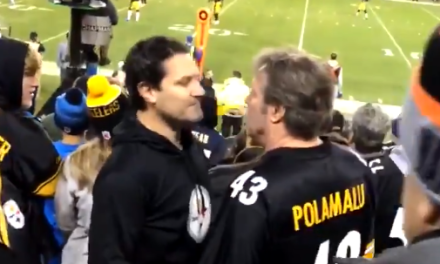 Steelers Fans Fight Each Other after a Headbutt