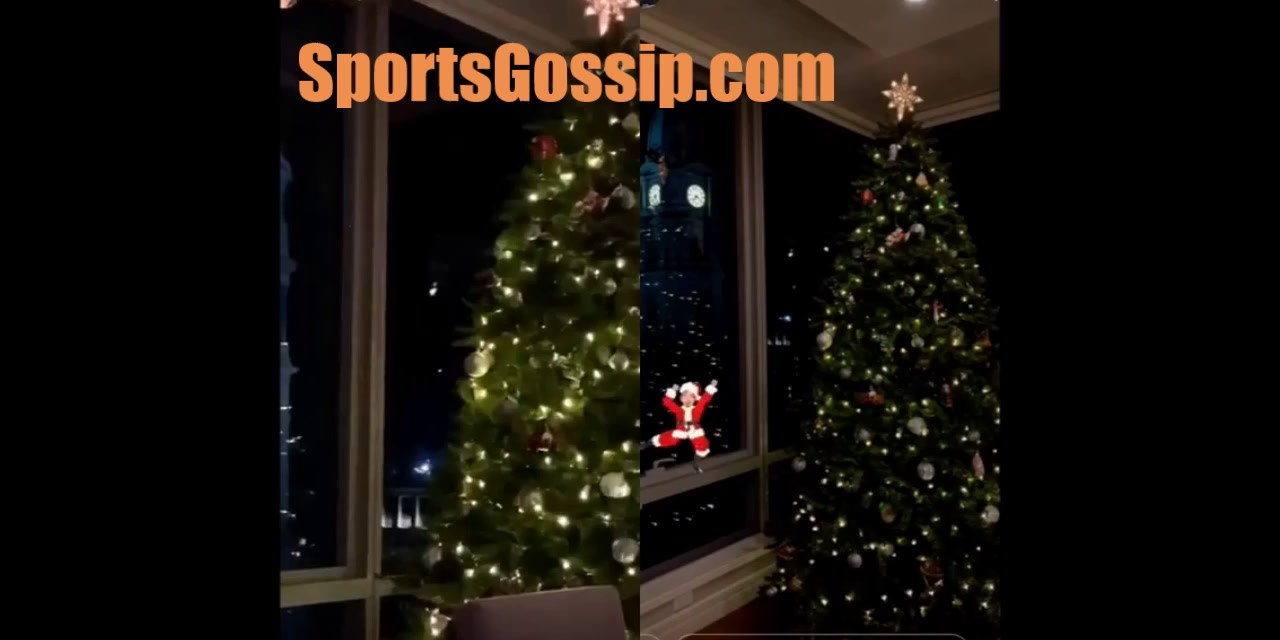 Ben and Kendall's Christmas Tree