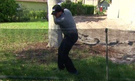 Phil Mickelson Continues to Show Off His Tremendous Leg Flexibility