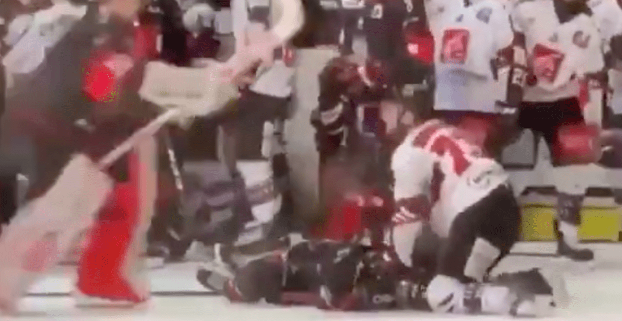 Hockey Player Suspended by Own Team for Brutal MMA Move