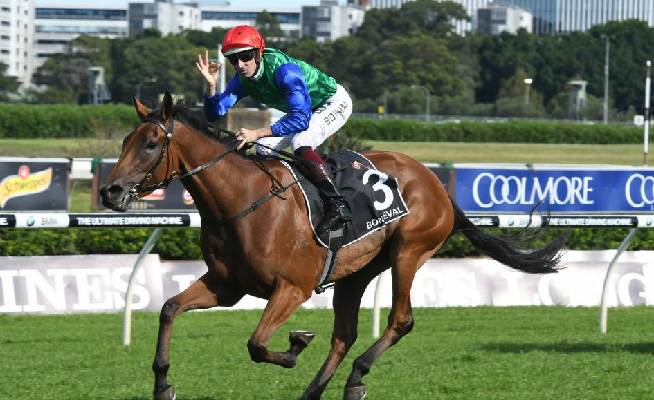 Image Result For Racing Rivalsa