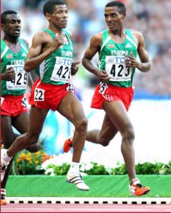 Bekele and geb