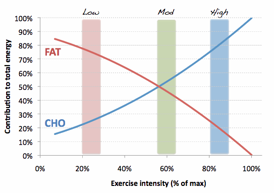 Fat-and-CHO-use-with-ex-intensity