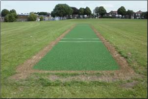 cricket-page