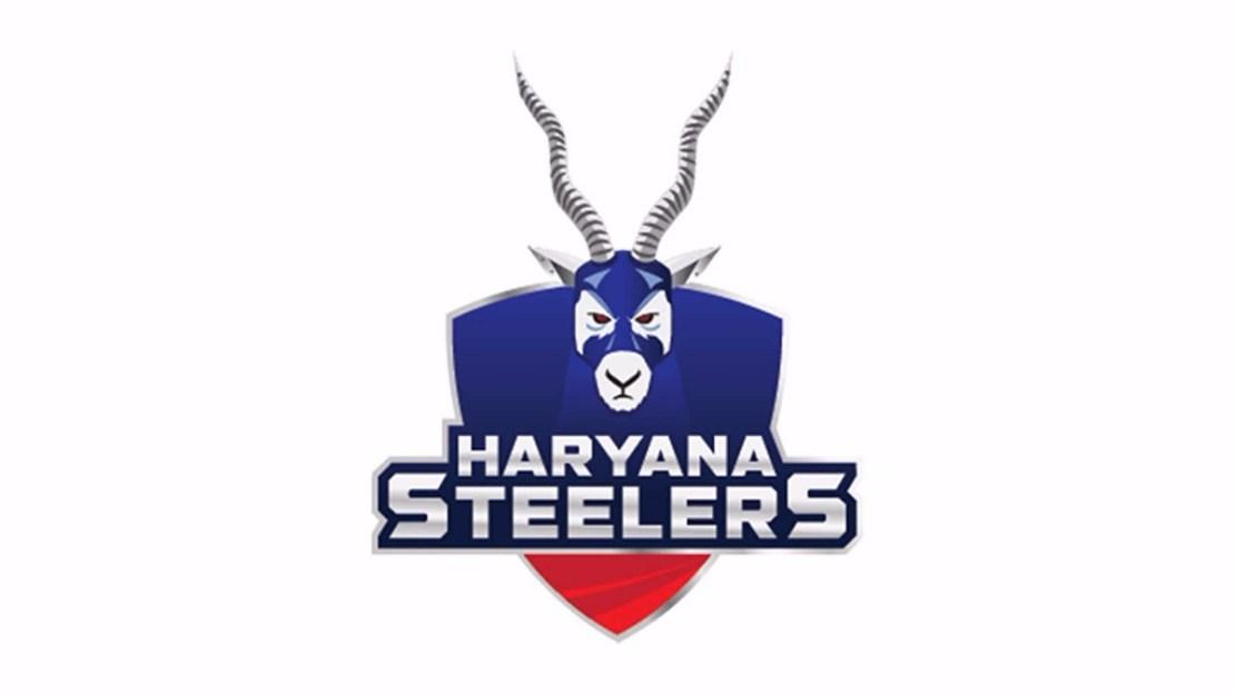 haryana-steelers-team-logo