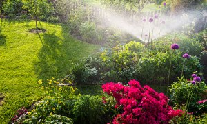 Choosing The Right Irrigation Contractor