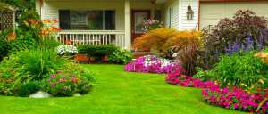 3 Tips For Reducing Lawn Stress