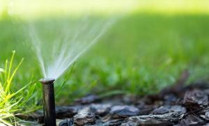 Here are just five reasons you need a lawn sprinkler system.