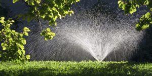 3 Interesting Irrigation Facts