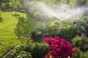 4 Types of Landscape Irrigation