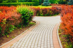 Landscape Lighting and Commercial Irrigation Services to Protect Your Property This Winter