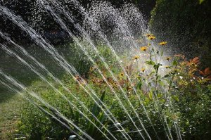 Using an Irrigation Controller to Increase Efficiency