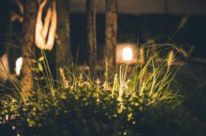 Landscape Lighting Design Tips for Commercial Spaces
