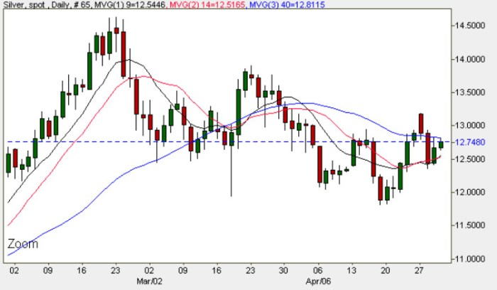 Spot Silver Prices - Daily Silver Price Chart 30th April 2009