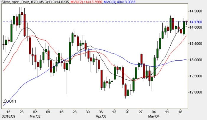 Spot Price Silver Chart - May 20th 2009