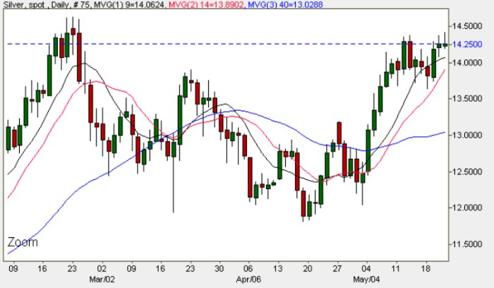 Spot Silver Price Chart 21st May 2009