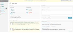 Esempio di dashboard WordPress