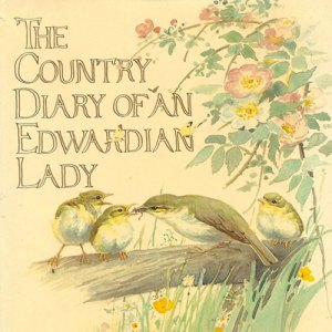 Country-Diary-book
