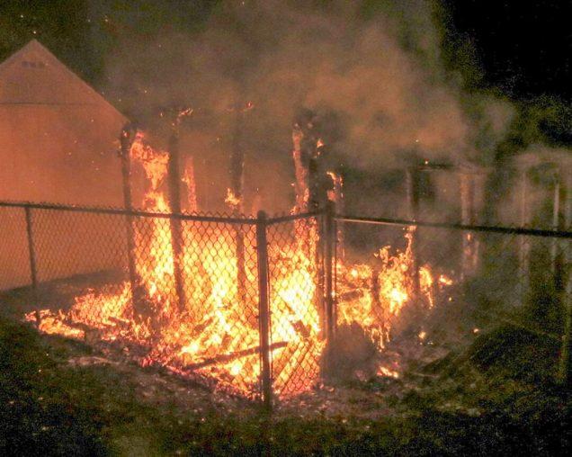 coop fire-6581