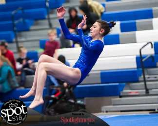 gymnastics-4420
