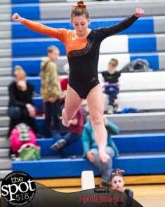 gymnastics-5042