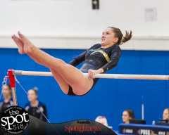 gymnastics-5137