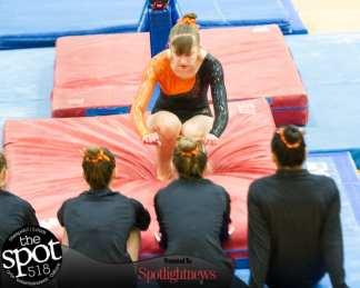 gymnastics-5208