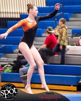 gymnastics-5420