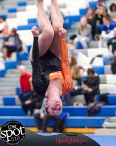 gymnastics-5645