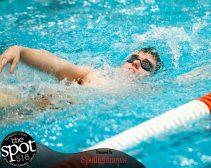 swimming-1035
