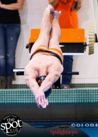 swimming-1156